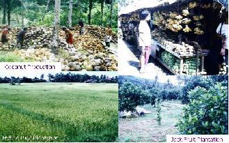 agriculturalresources.jpg